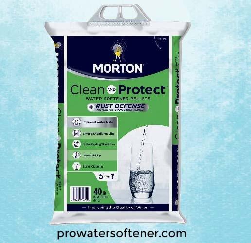 MortonF1247